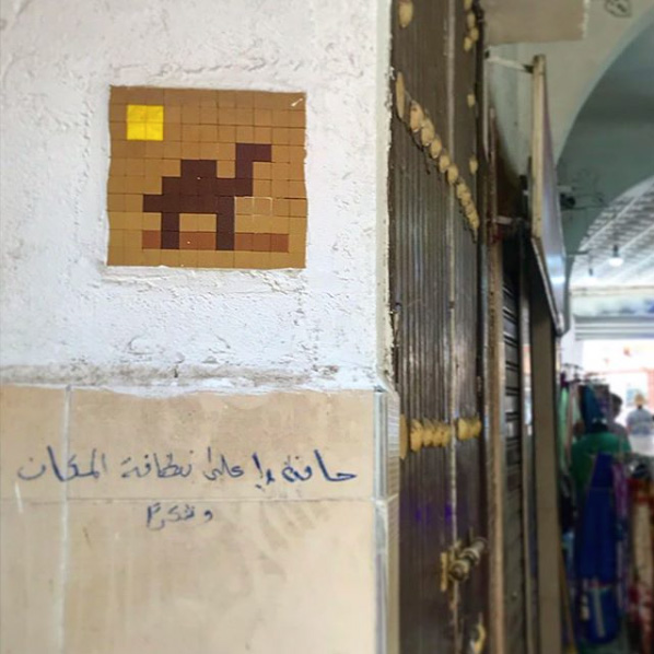 Camel mosaic by Invader